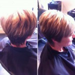 Cut & Blow Dry By Molly